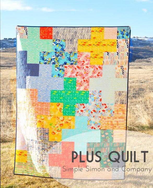 plus-quilt-title-shot_edited-5-586x720