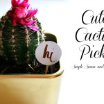 Cute Cactus Picks